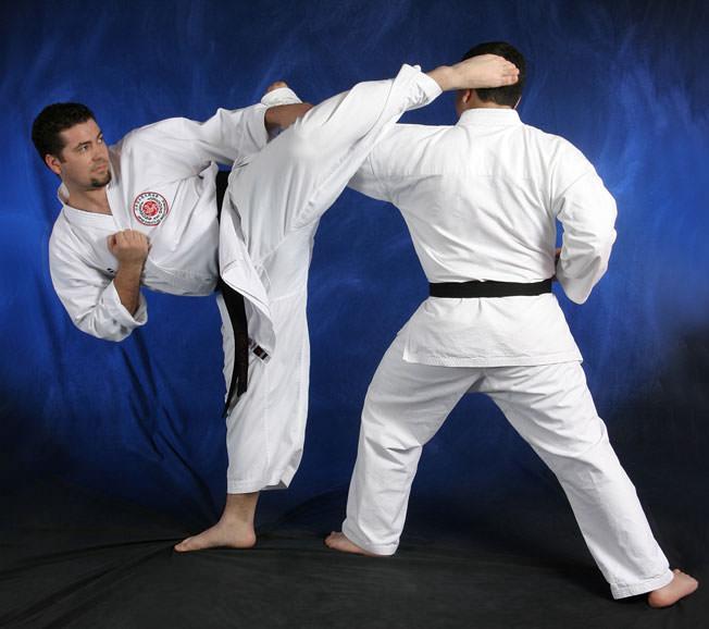 shotokan karate fighting techniques pdf